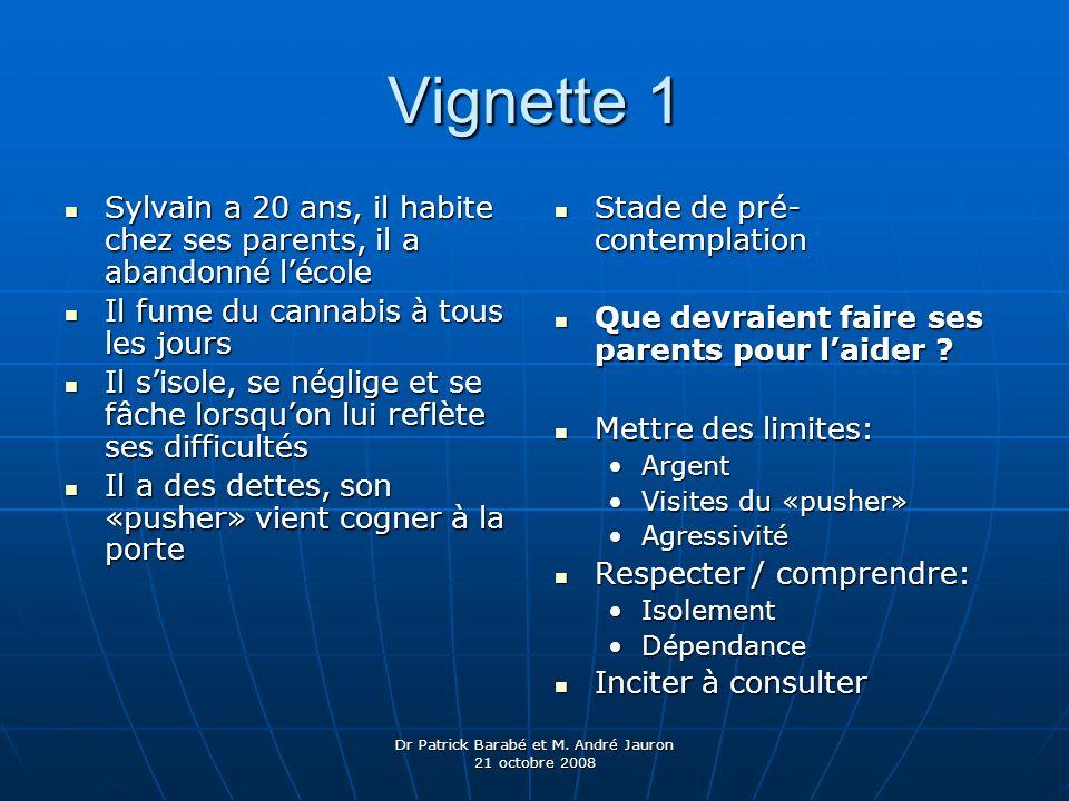 Dr Patrick Barabé et M. André Jauron 21 octobre 2008 Vignette 1 Sylvain a 20 ans, il habite chez ses parents, il a abandonné lécole Sylvain a 20 ans,