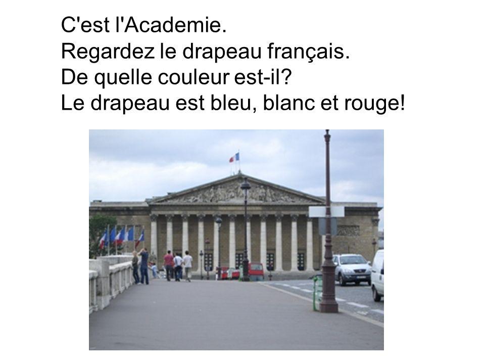 C est l Academie. Regardez le drapeau français. De quelle couleur est-il.