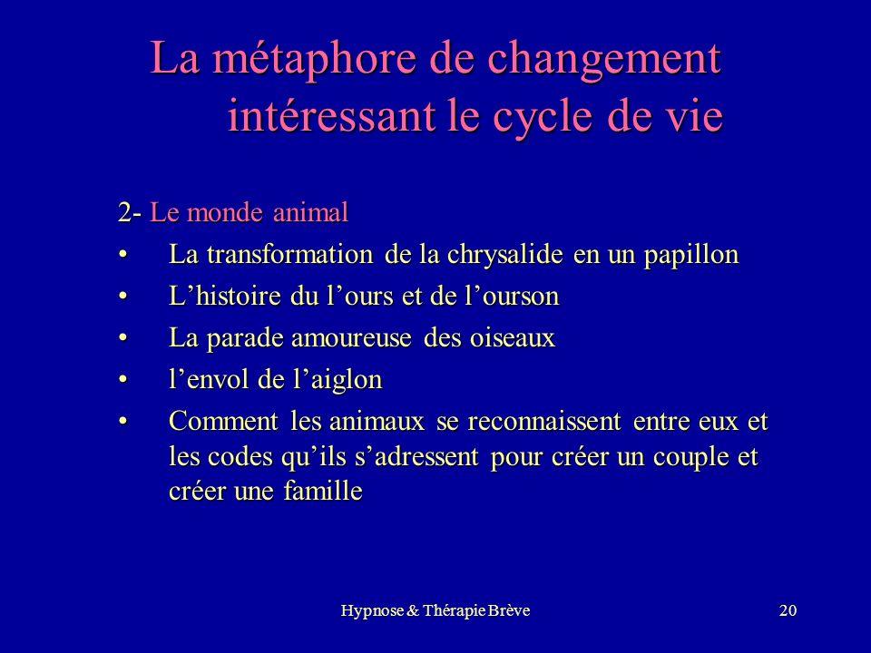 Hypnose & Thérapie Brève19 Quelles métaphores ? 1.La transformation de la métaphore du patient (§) 2.La métaphore de changement (close your eyes, now