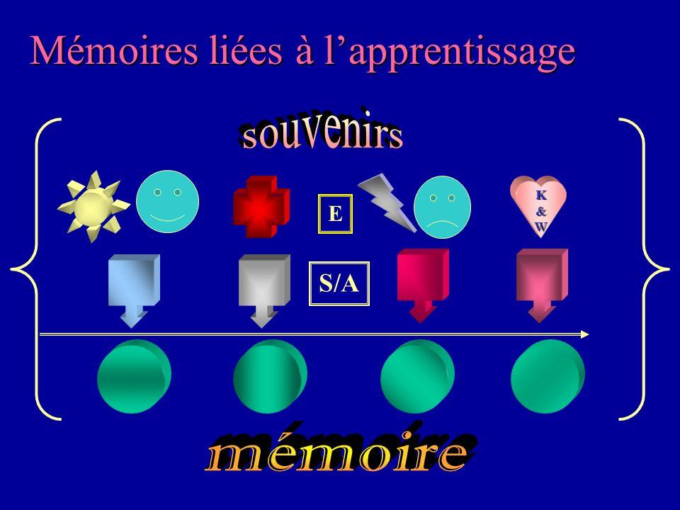Hypnose & Thérapie Brève3 La mémoire du corps Les situations sont alors « mises en mémoire »Les situations sont alors « mises en mémoire » événement +