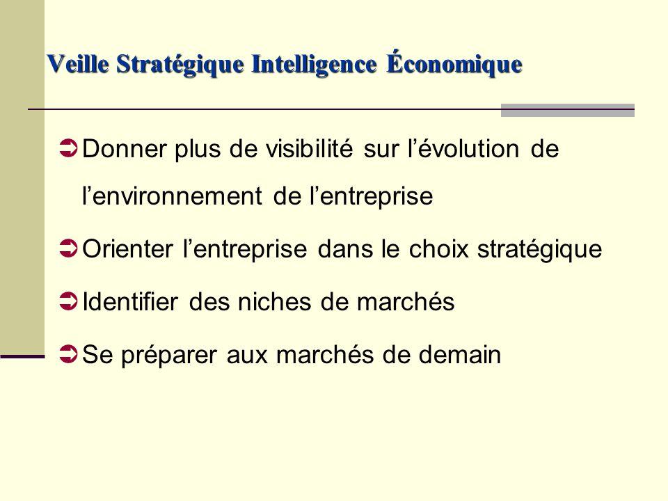 Donner plus de visibilité sur lévolution de lenvironnement de lentreprise Orienter lentreprise dans le choix stratégique Identifier des niches de marchés Se préparer aux marchés de demain Veille Stratégique Intelligence Économique