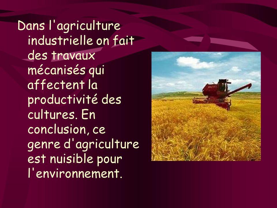 Dans l'agriculture industrielle on fait des travaux mécanisés qui affectent la productivité des cultures. En conclusion, ce genre d'agriculture est nu