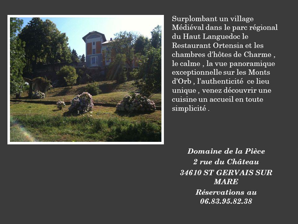 Surplombant un village Médiéval dans le parc régional du Haut Languedoc le Restaurant Ortensia et les chambres dhôtes de Charme, le calme, la vue pano