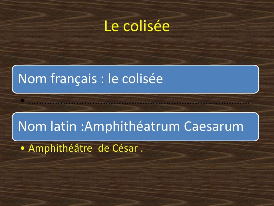 Le colisée Nom français : le colisée ………………………………………………………………………… Nom latin :Amphithéatrum Caesarum Amphithéâtre de César.