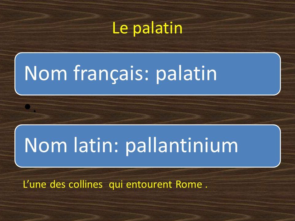 Le palatin Nom français: palatin. Nom latin: pallantinium Lune des collines qui entourent Rome.