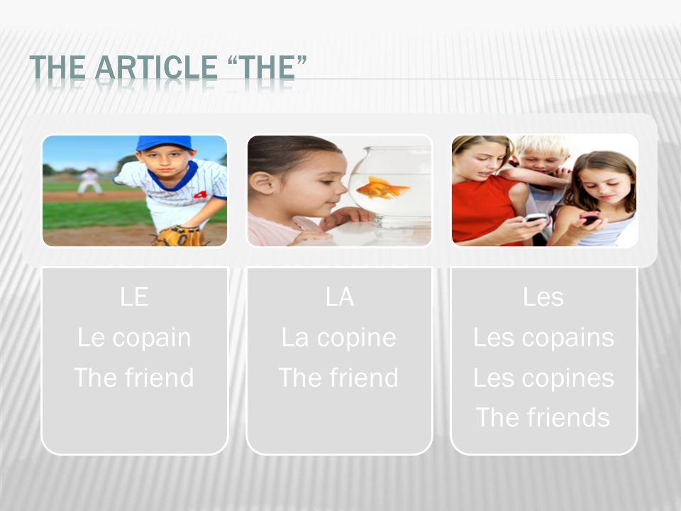LE Le copain The friend LA La copine The friend Les Les copains Les copines The friends