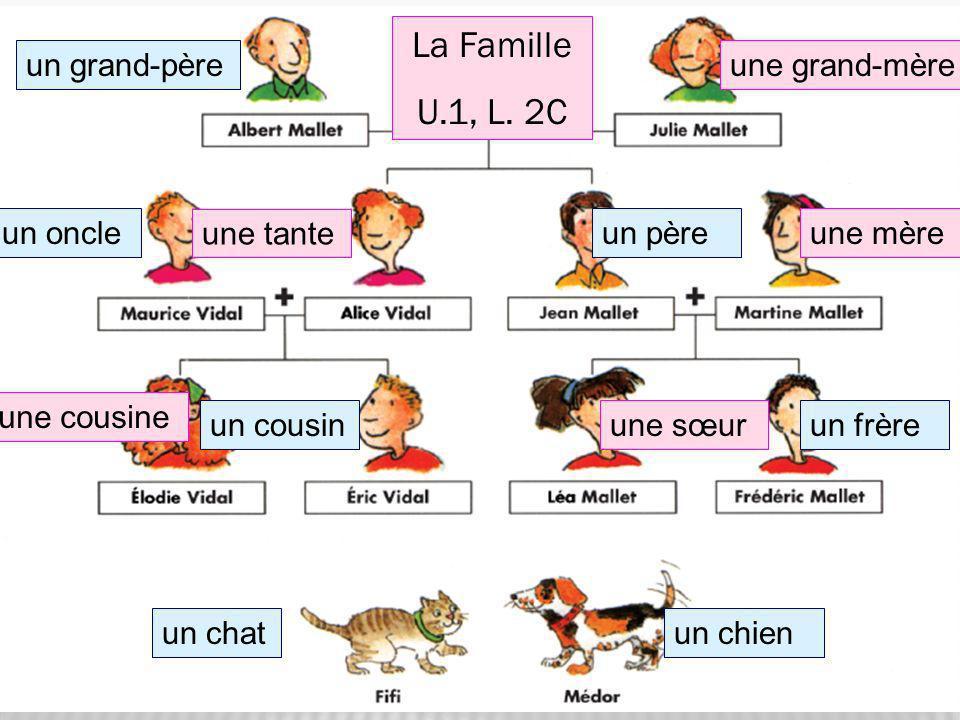 un grand-pèreune grand-mère un pèreun oncle un frèreun cousin un chienun chat une mère une tante une sœur une cousine La Famille U.1, L. 2C