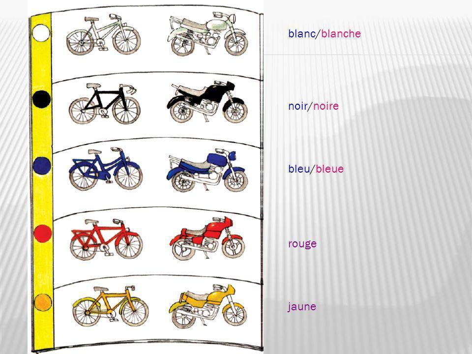 blanc/blanche noir/noire bleu/bleue rouge jaune