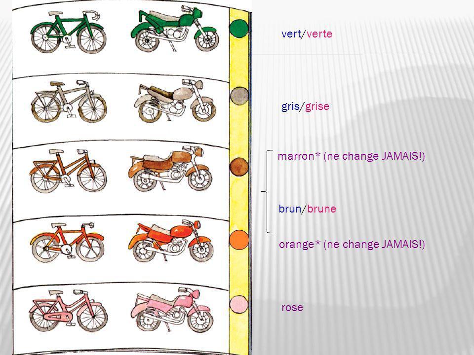 vert/verte gris/grise marron* (ne change JAMAIS!) orange* (ne change JAMAIS!) rose brun/brune