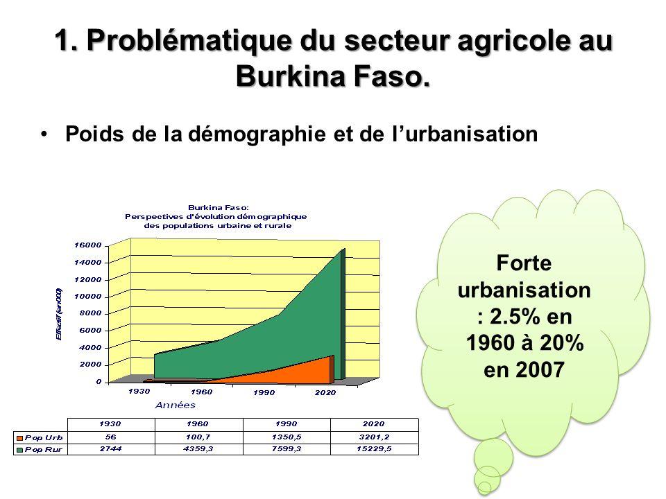 3.Problématique du financement de lAgriculture au Burkina Faso.