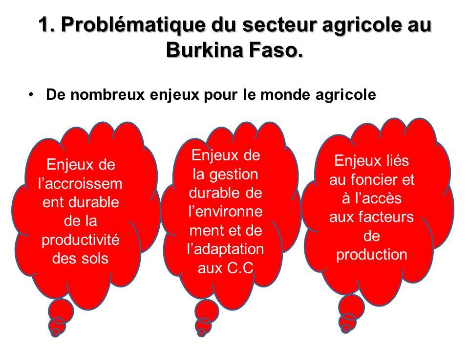 1.Problématique du secteur agricole au Burkina Faso.
