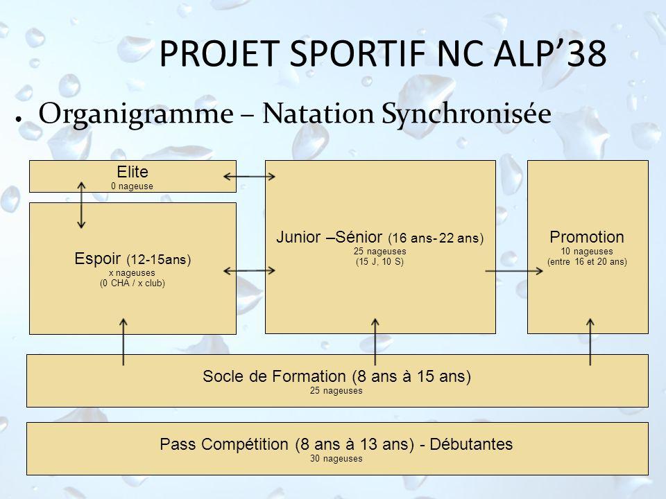 PROJET SPORTIF NC ALP38 Organigramme – Natation Synchronisée Elite 0 nageuse Espoir (12-15ans) x nageuses (0 CHA / x club) Junior –Sénior (16 ans- 22
