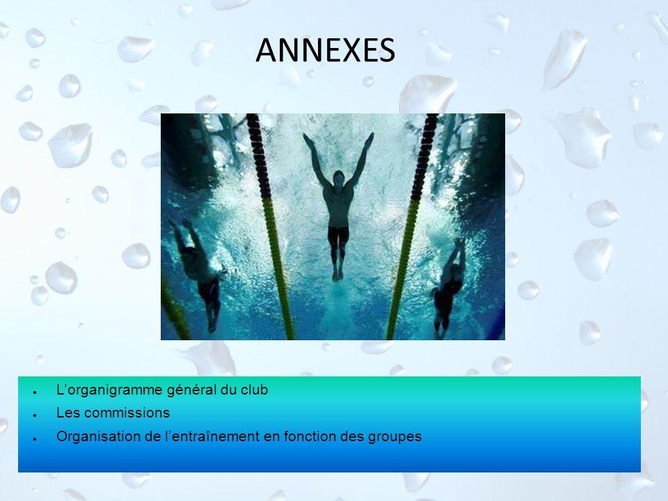 ANNEXES Lorganigramme général du club Les commissions Organisation de lentraînement en fonction des groupes