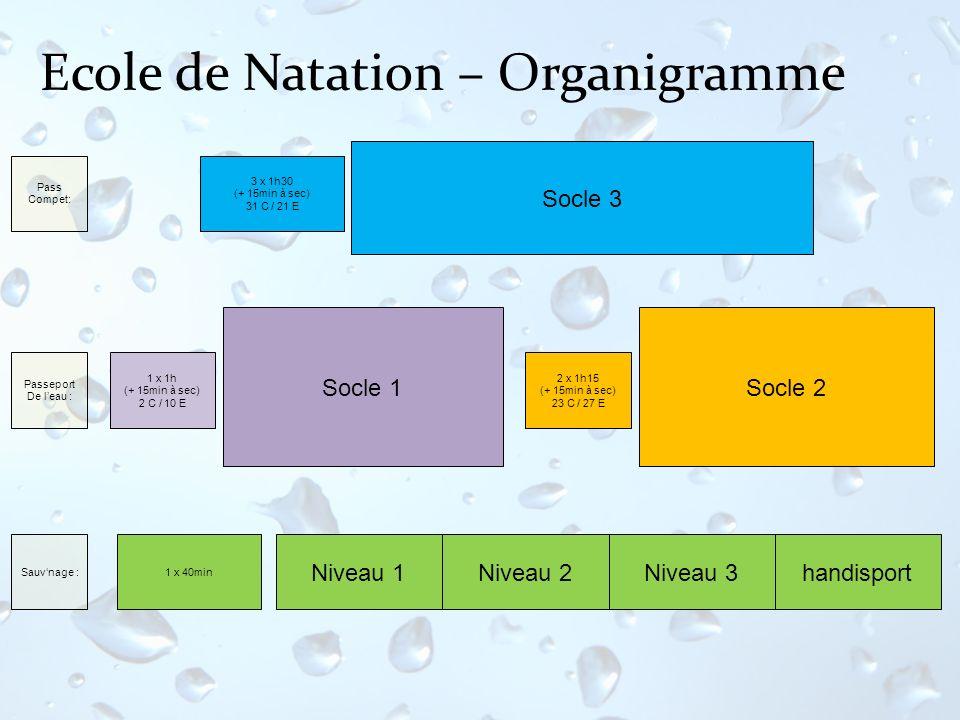 Ecole de Natation – Organigramme Niveau 1 Socle 1 Niveau 2 Socle 2 Niveau 3 Sauvnage : 3 x 1h30 (+ 15min à sec) 31 C / 21 E 2 x 1h15 (+ 15min à sec) 2