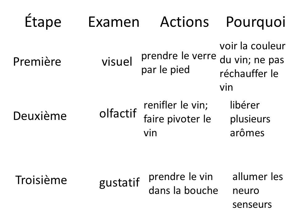 ÉtapeExamenActionsPourquoi Première Deuxième Troisième visuel prendre le verre par le pied voir la couleur du vin; ne pas réchauffer le vin olfactif r