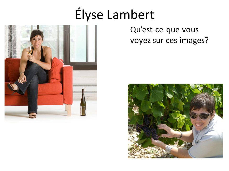 Élyse Lambert Quest-ce que vous voyez sur ces images?