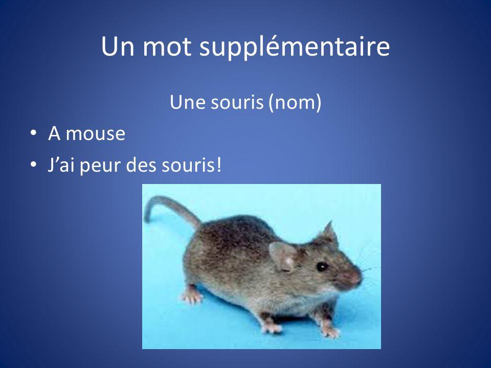 Un mot supplémentaire Une souris (nom) A mouse Jai peur des souris!