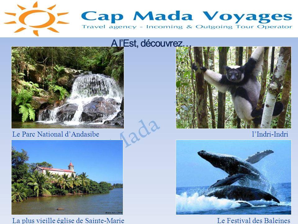 Le Parc National dAndasibelIndri-Indri La plus vieille église de Sainte-MarieLe Festival des Baleines