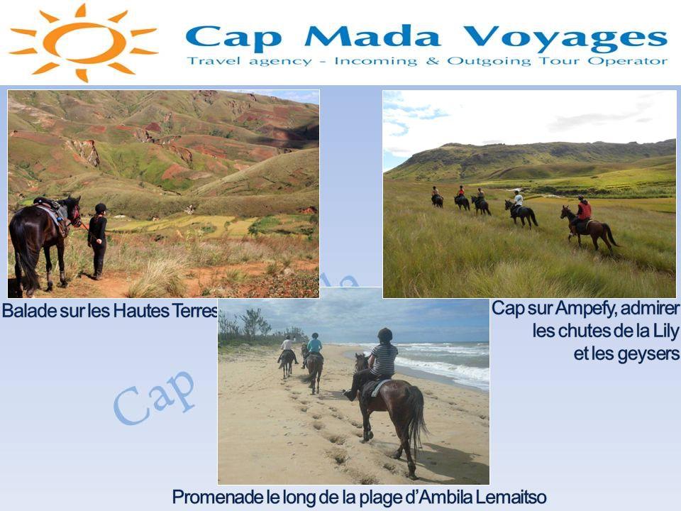 La ville dAntananarivoLe Palais de la Reine Les Chutes de la LilyDifférents espèces de la biodiversité malgache