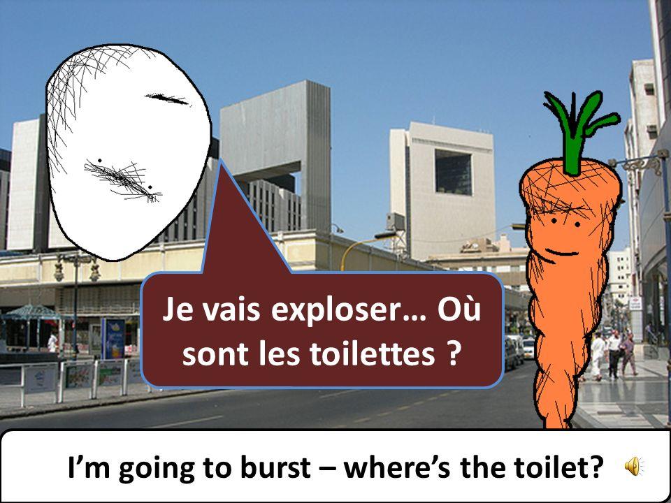 Il y a des toilettes publiques dans la prochaine rue. Theres a public toilet on the next street.