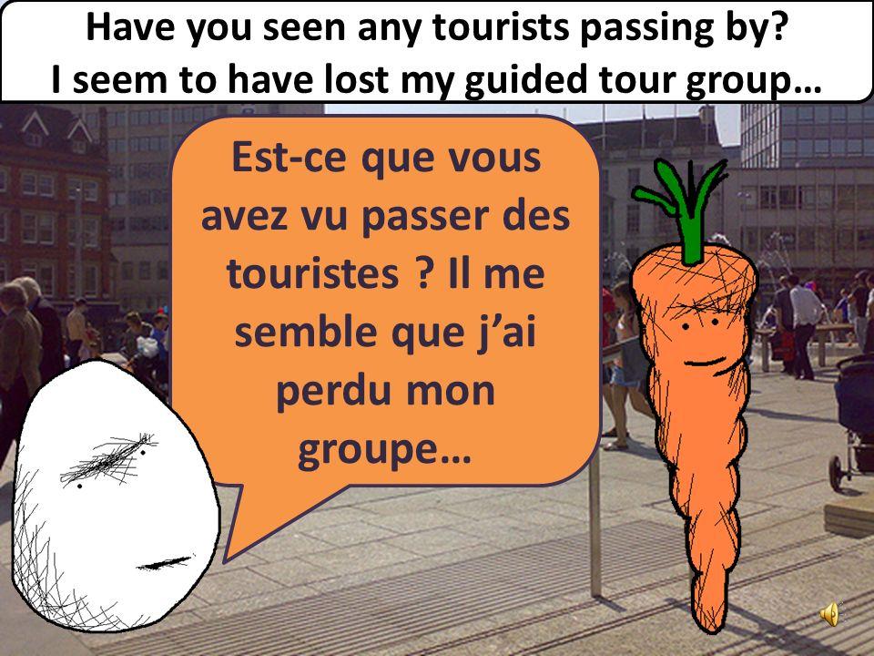 Est-ce que vous avez vu passer des touristes .