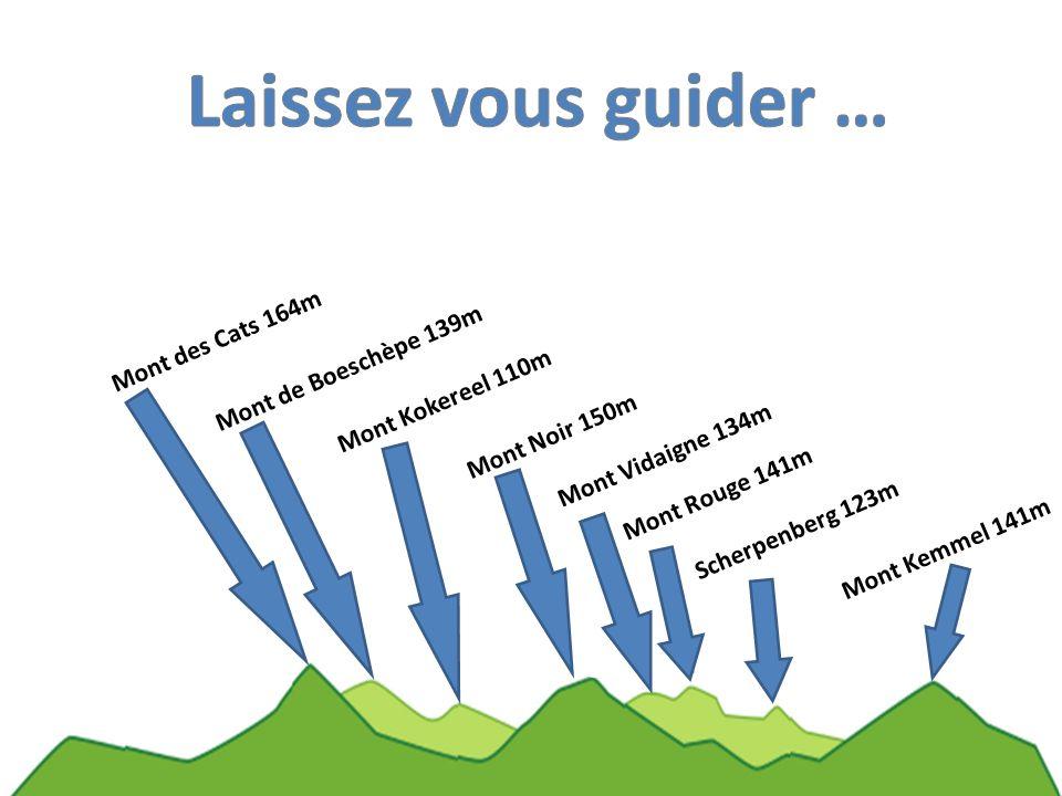 Mont Kemmel 141m Scherpenberg 123m Mont Rouge 141m Mont Vidaigne 134m Mont Noir 150m Mont Kokereel 110m Mont de Boeschèpe 139m Mont des Cats 164m