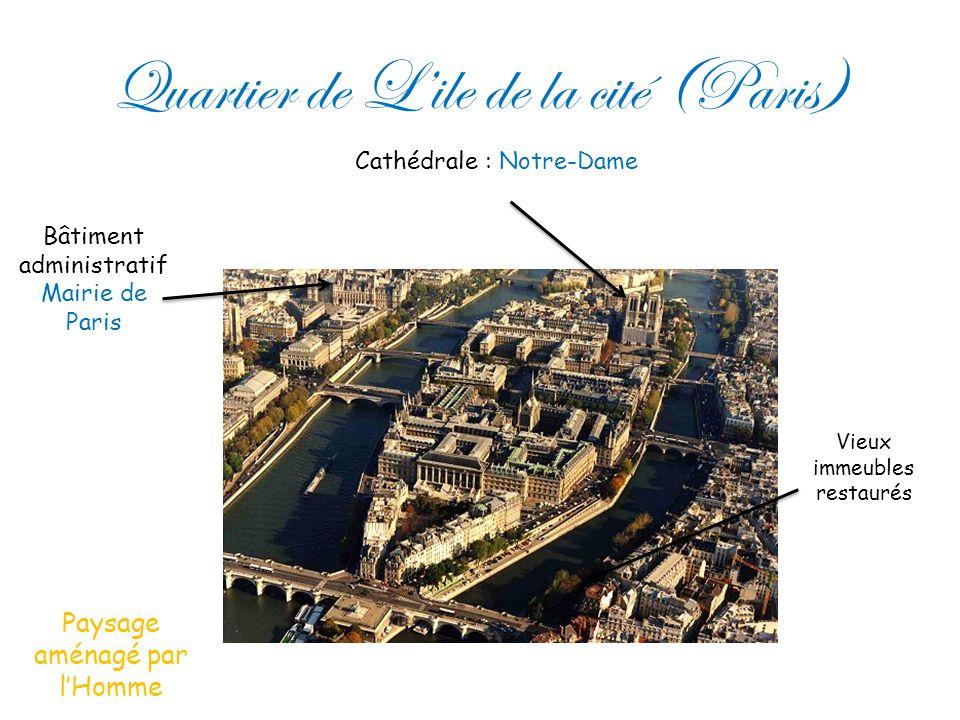 Quartier de Lile de la cité (Paris) Bâtiment administratif Mairie de Paris Cathédrale : Notre-Dame Vieux immeubles restaurés Paysage aménagé par lHomm