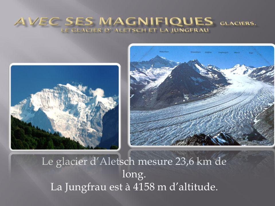 Le glacier dAletsch mesure 23,6 km de long. La Jungfrau est à 4158 m daltitude.
