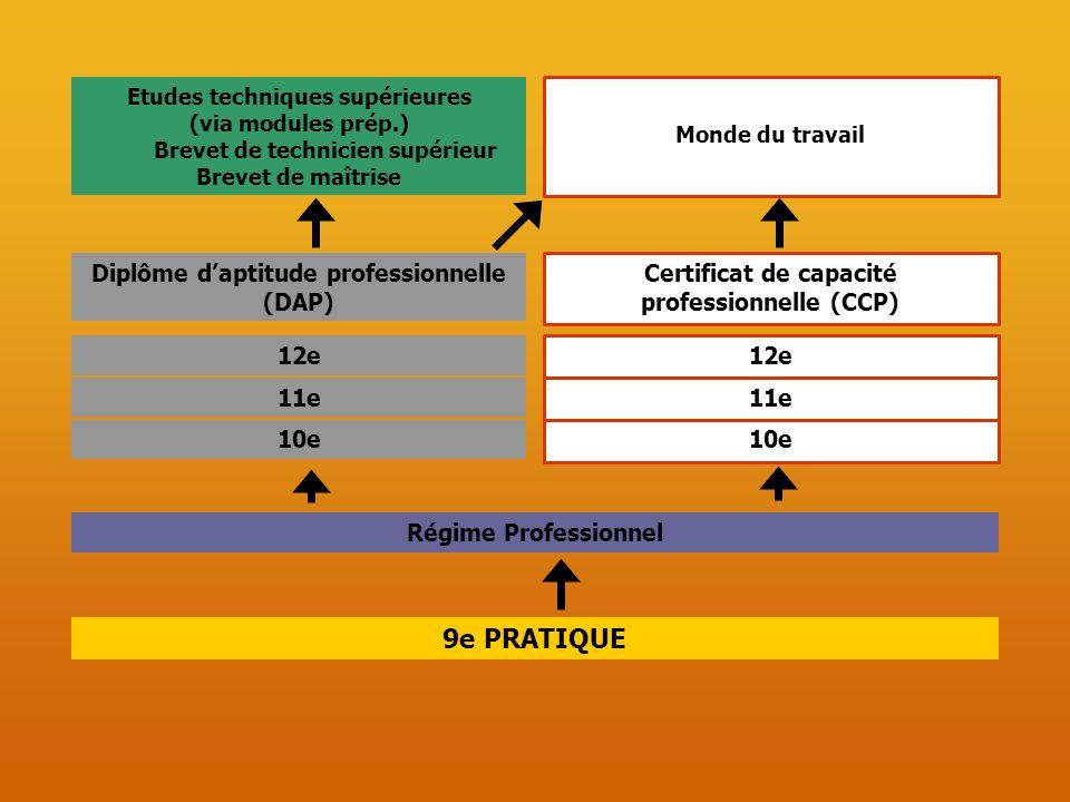 9e PRATIQUE 12e 11e 10e Etudes techniques supérieures (via modules prép.) Brevet de technicien supérieur Brevet de maîtrise Monde du travail 12e 11e 1