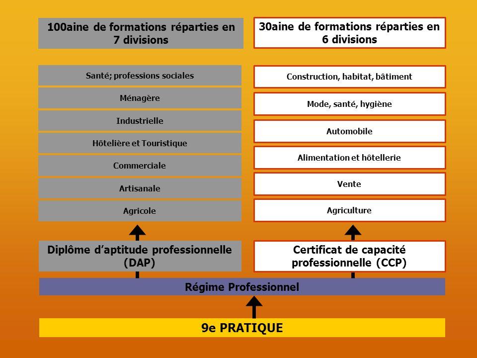 9e PRATIQUE Régime Professionnel 100aine de formations réparties en 7 divisions Agricole Artisanale Commerciale Hôtelière et Touristique Industrielle