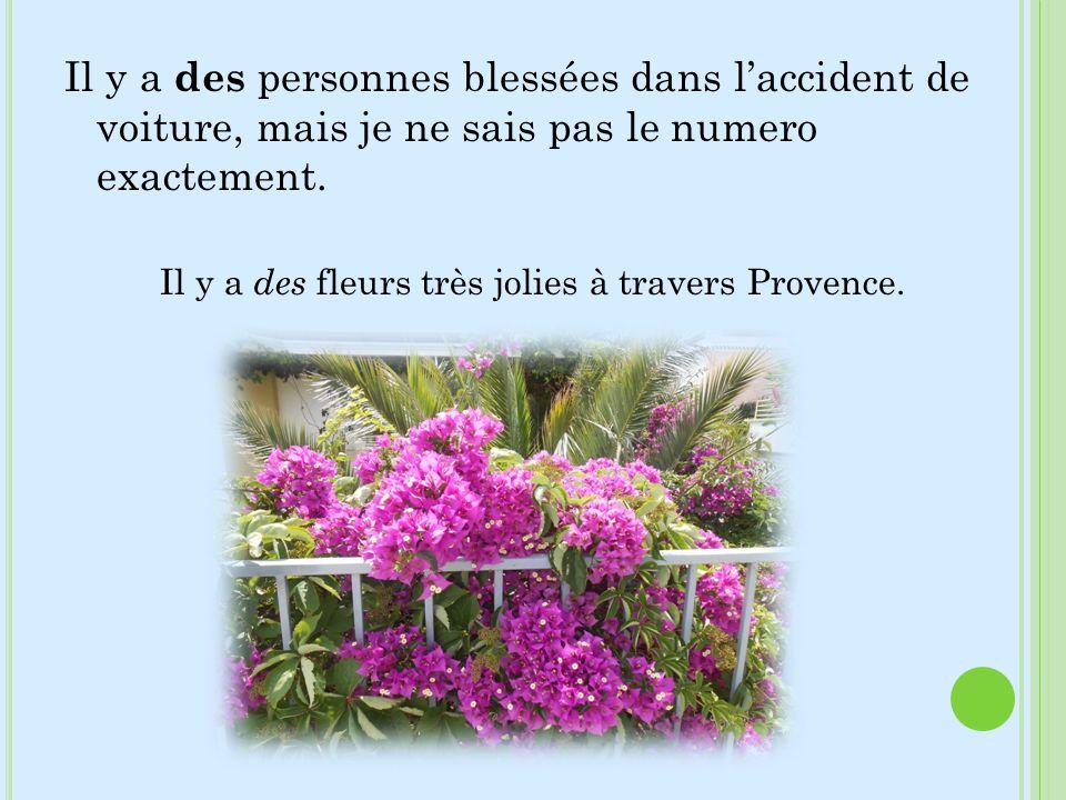 Il y a des personnes blessées dans laccident de voiture, mais je ne sais pas le numero exactement. Il y a des fleurs très jolies à travers Provence.