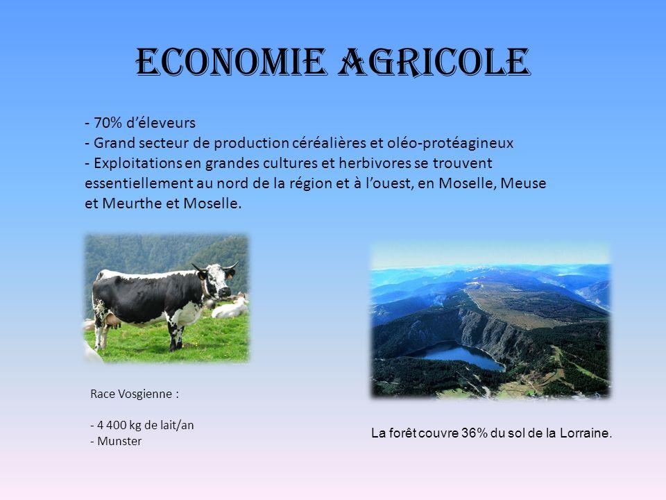 Economie Agricole Race Vosgienne : - 4 400 kg de lait/an - Munster - 70% déleveurs - Grand secteur de production céréalières et oléo-protéagineux - Ex
