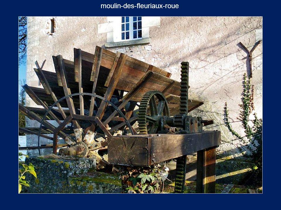 moulin-des-fleuriaux-roue