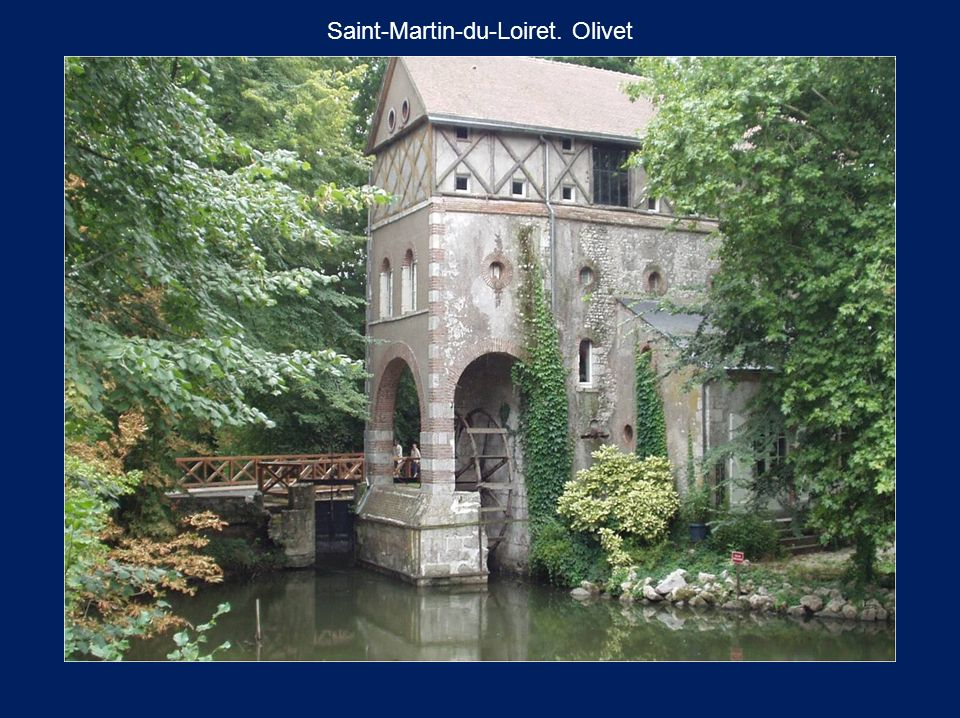 Saint-Martin-du-Loiret. Olivet