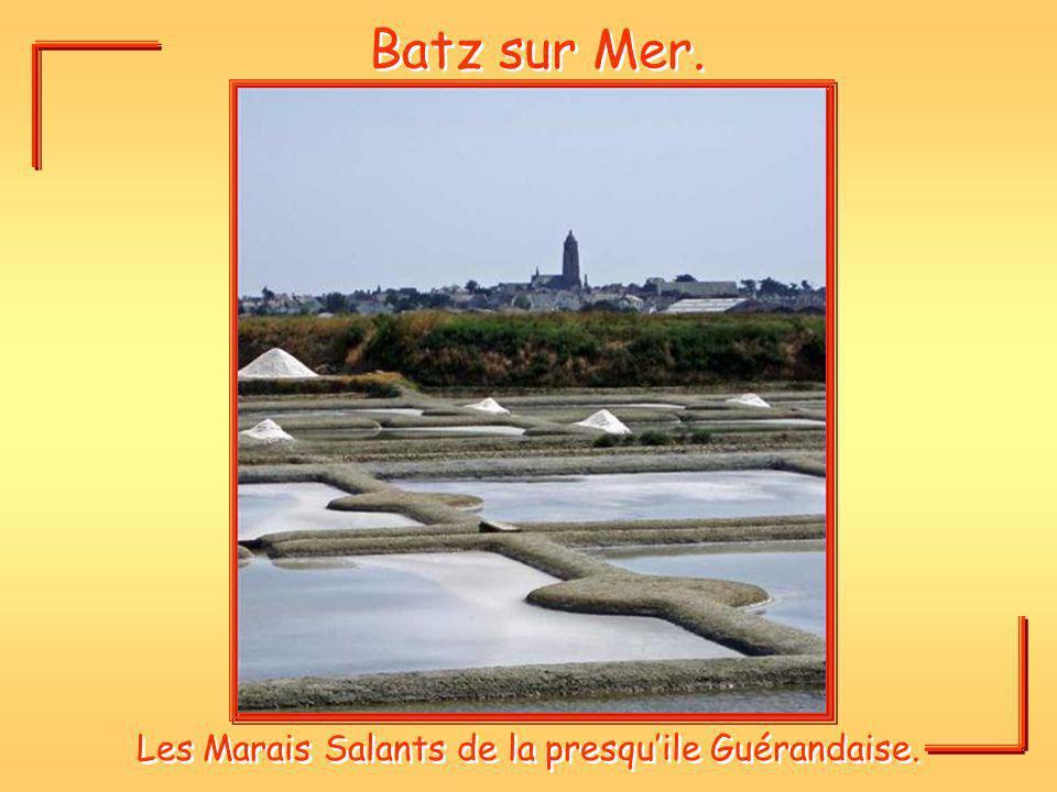 Batz sur Mer. Les Marais Salants de la presquile Guérandaise.