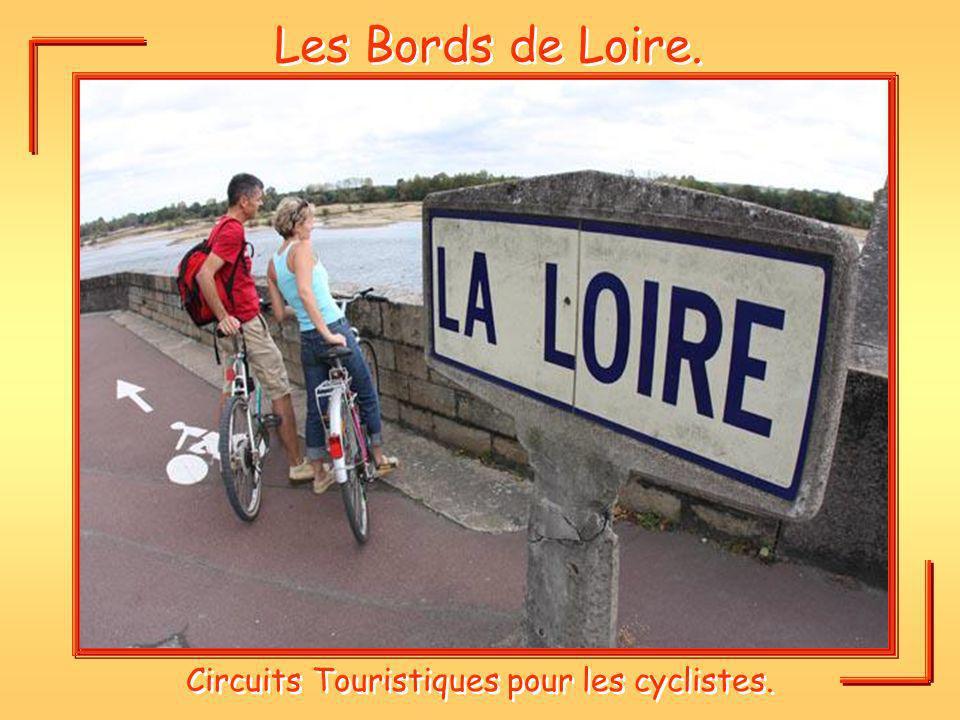 Les Bords de Loire. Circuits Touristiques pour les cyclistes.