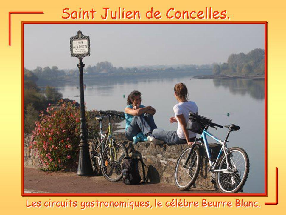 Saint Julien de Concelles. Les circuits gastronomiques, le célèbre Beurre Blanc.