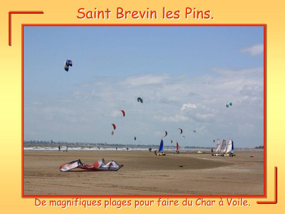 Saint Brevin les Pins. De magnifiques plages pour faire du Char à Voile.