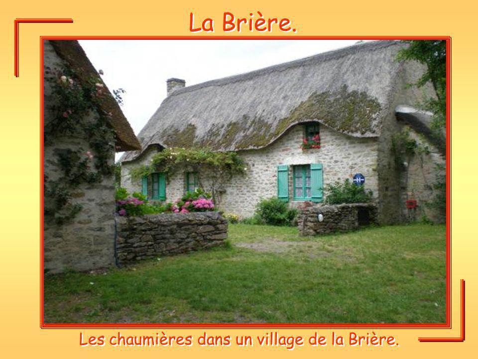 La Brière. Les chaumières dans un village de la Brière.