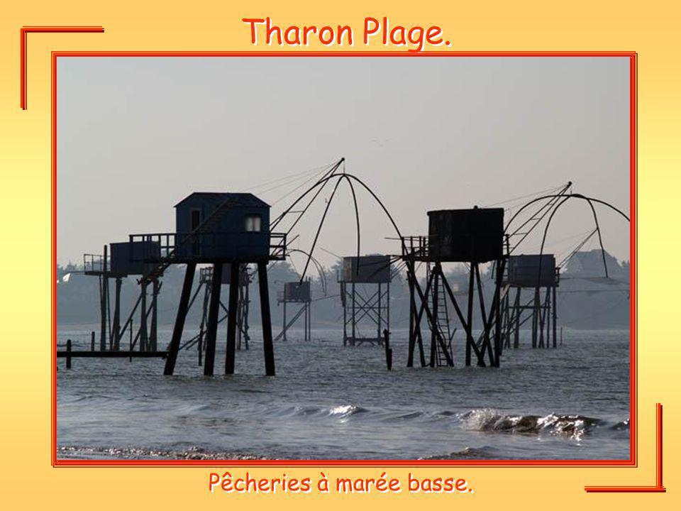 Tharon Plage. Pêcheries à marée basse.
