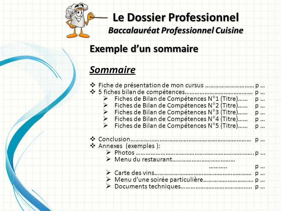 Exemple dun sommaire Sommaire Fiche de présentation de mon cursus ………………………… p … 5 fiches bilan de compétences…………………………………… p … Fiches de Bilan de Co