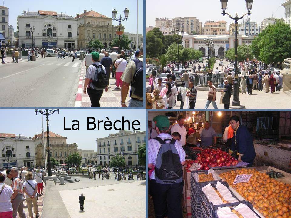 Philippeville : La corniche, l Hotel de Ville,le Port