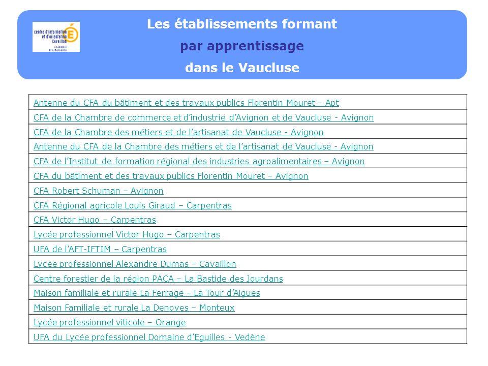 Les établissements formant par apprentissage dans le Vaucluse Antenne du CFA du bâtiment et des travaux publics Florentin Mouret – Apt CFA de la Chambre de commerce et dindustrie dAvignon et de Vaucluse - Avignon CFA de la Chambre des métiers et de lartisanat de Vaucluse - Avignon Antenne du CFA de la Chambre des métiers et de lartisanat de Vaucluse - Avignon CFA de lInstitut de formation régional des industries agroalimentaires – Avignon CFA du bâtiment et des travaux publics Florentin Mouret – Avignon CFA Robert Schuman – Avignon CFA Régional agricole Louis Giraud – Carpentras CFA Victor Hugo – Carpentras Lycée professionnel Victor Hugo – Carpentras UFA de lAFT-IFTIM – Carpentras Lycée professionnel Alexandre Dumas – Cavaillon Centre forestier de la région PACA – La Bastide des Jourdans Maison familiale et rurale La Ferrage – La Tour dAigues Maison Familiale et rurale La Denoves – Monteux Lycée professionnel viticole – Orange UFA du Lycée professionnel Domaine dEguilles - Vedène