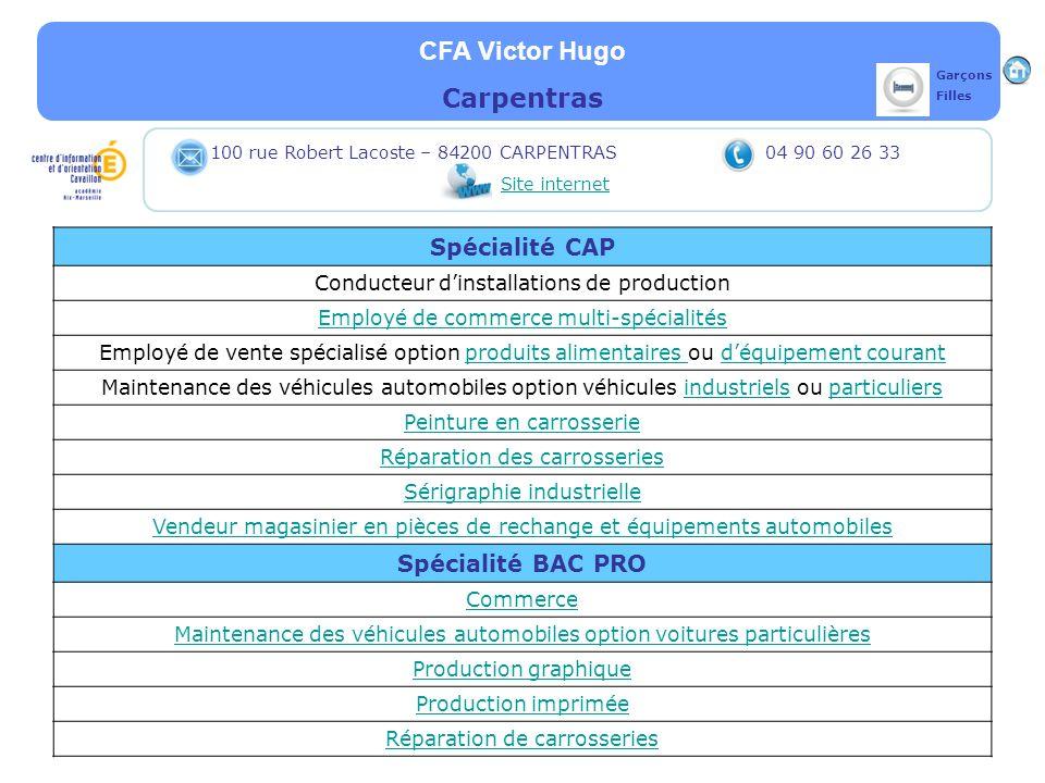 CFA Victor Hugo Carpentras Spécialité CAP Conducteur dinstallations de production Employé de commerce multi-spécialités Employé de vente spécialisé op