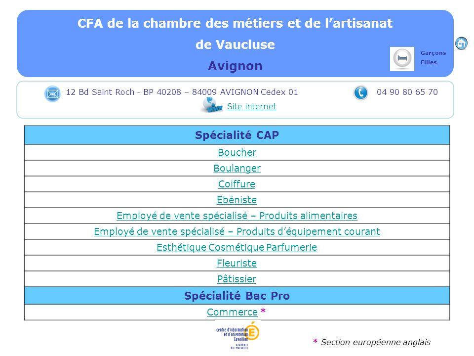 CFA de la chambre des métiers et de lartisanat de Vaucluse Avignon Spécialité CAP Boucher Boulanger Coiffure Ebéniste Employé de vente spécialisé – Pr