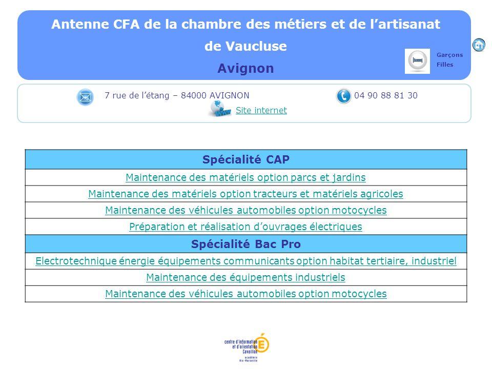 Antenne CFA de la chambre des métiers et de lartisanat de Vaucluse Avignon Spécialité CAP Maintenance des matériels option parcs et jardins Maintenanc