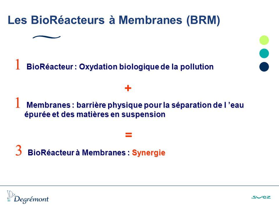 Les BioRéacteurs à Membranes (BRM) Système immergé Flux : 15 to 50 L/h.m 2.t °C TMP : < 500 mbar V module : air lift Système externe
