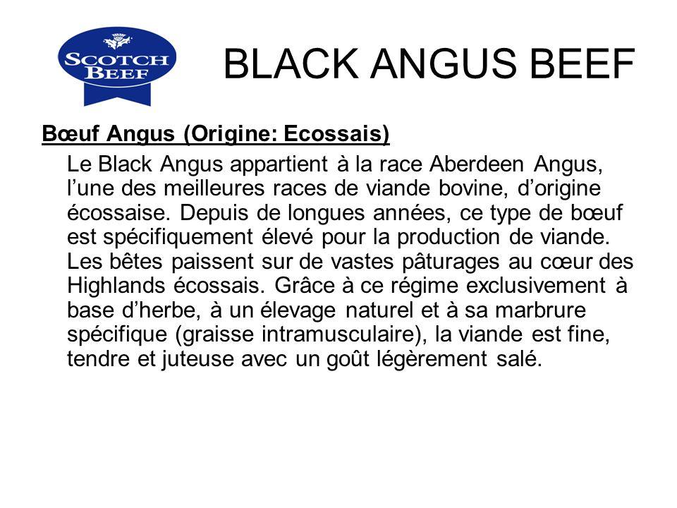 BLACK ANGUS BEEF Bœuf Angus (Origine: Ecossais) Le Black Angus appartient à la race Aberdeen Angus, lune des meilleures races de viande bovine, dorigi