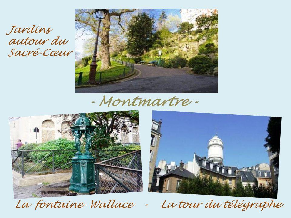 Château des brouillards - le clos de Montmartre - - Le clos, vigne qui pousse sur le flanc nord de la butte
