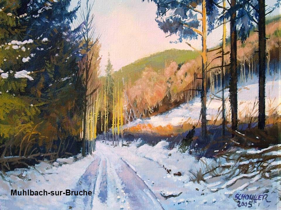 Au dessus de Muhlbach sur Bruche Muhlbach-sur-Bruche